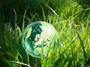 La valeur verte
