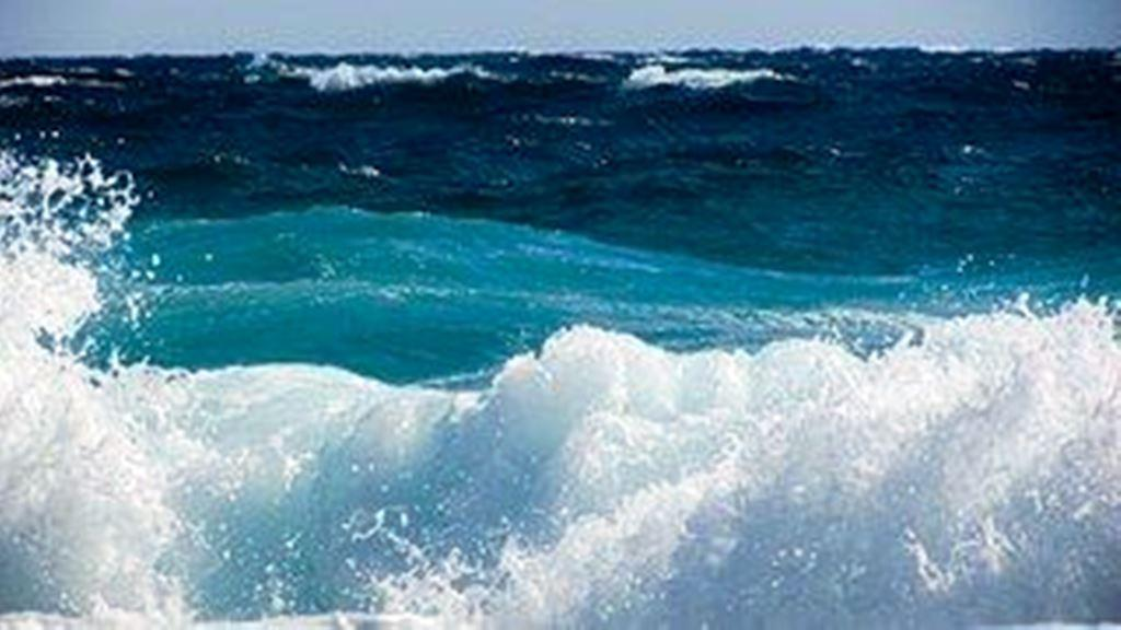 RECHERCHE ACHAT SUR LACANAU - SURF