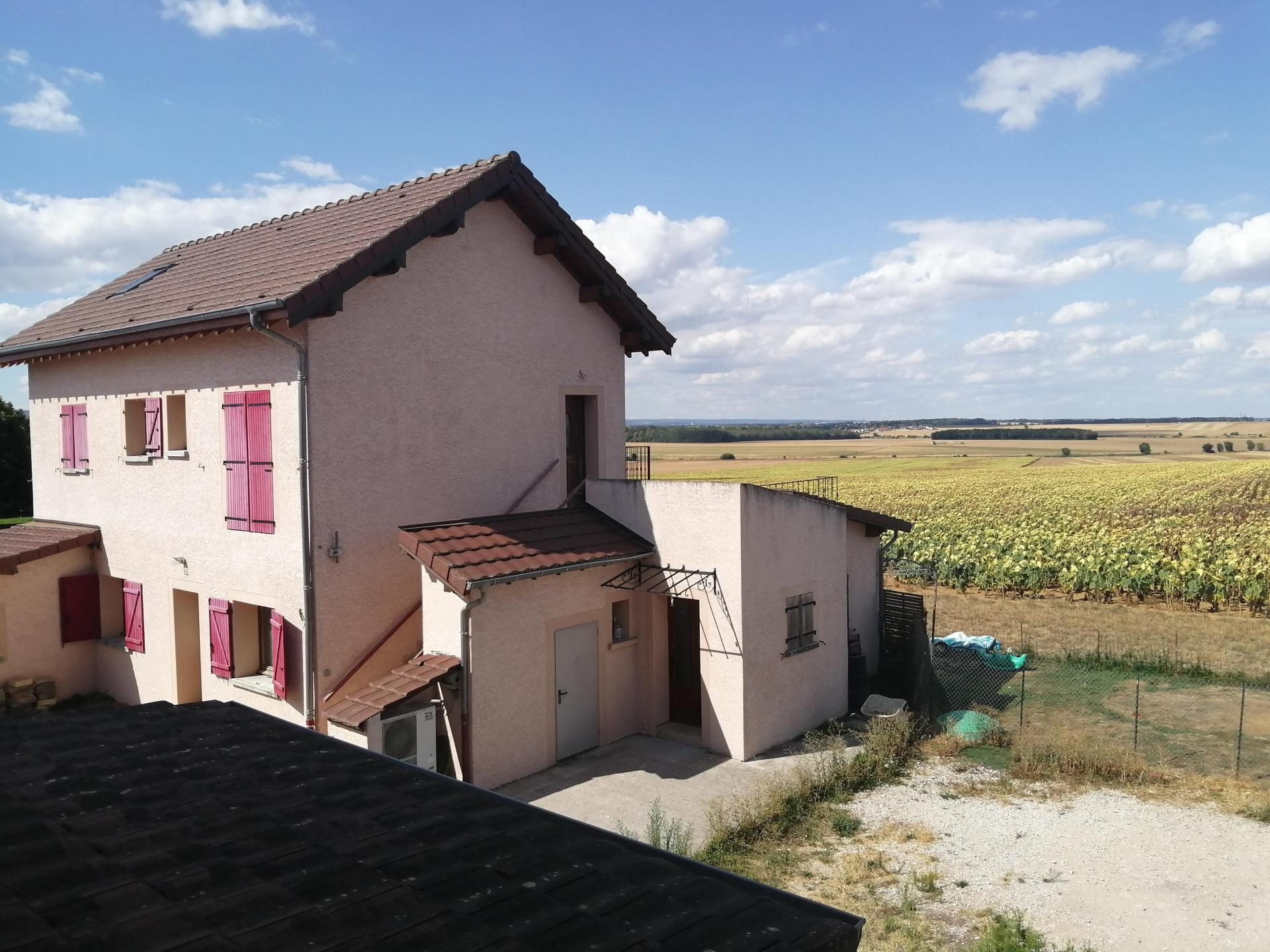 BEL ENSEMBLE IMMOBILIER A 20 MN DE DIJON - IDEAL INVESTISSEMENT LOCATIF